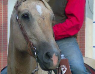 pony-express-reride-returns