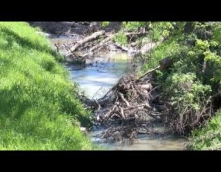 flood-no-more-southsiders-create-volunteer-group-to-cleanup-contrary-creek
